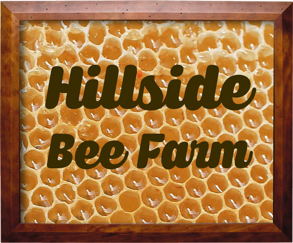 shrivers_cth_frame hillside bee